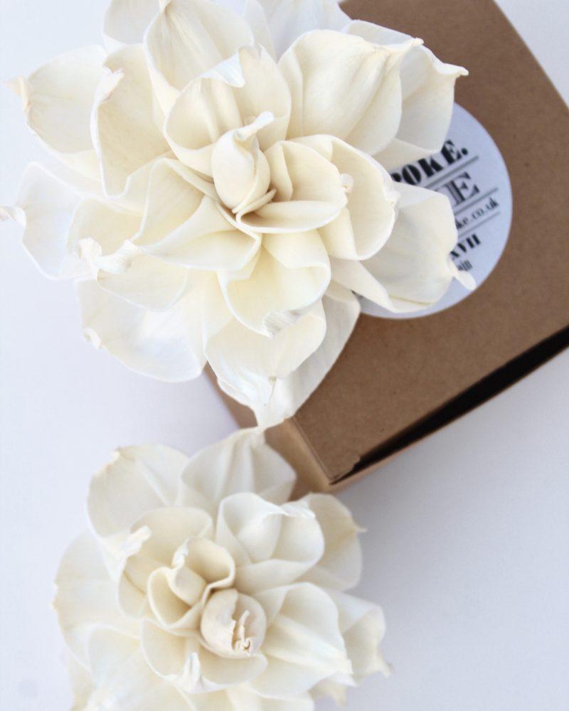 Dahlia Diffuser Flowers