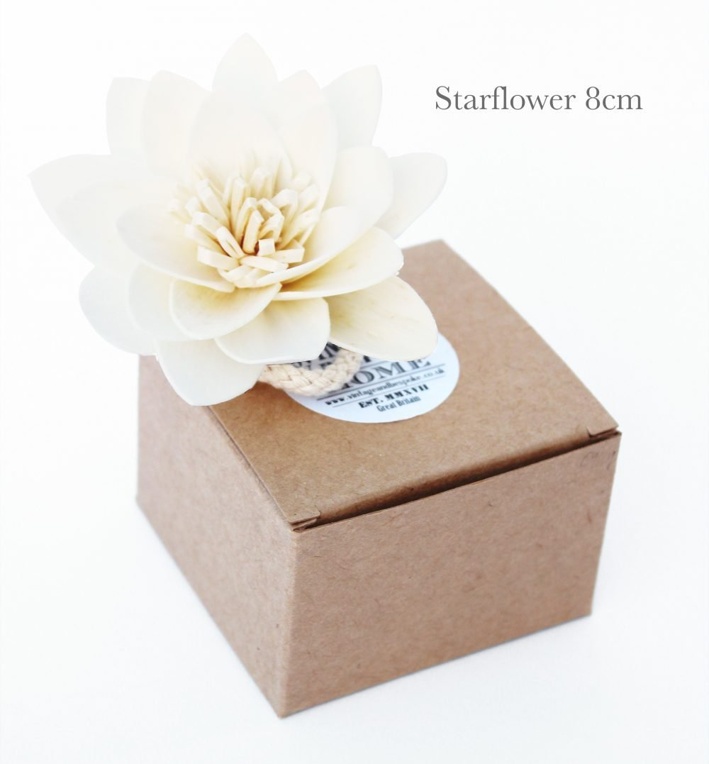 Starflower Diffuser