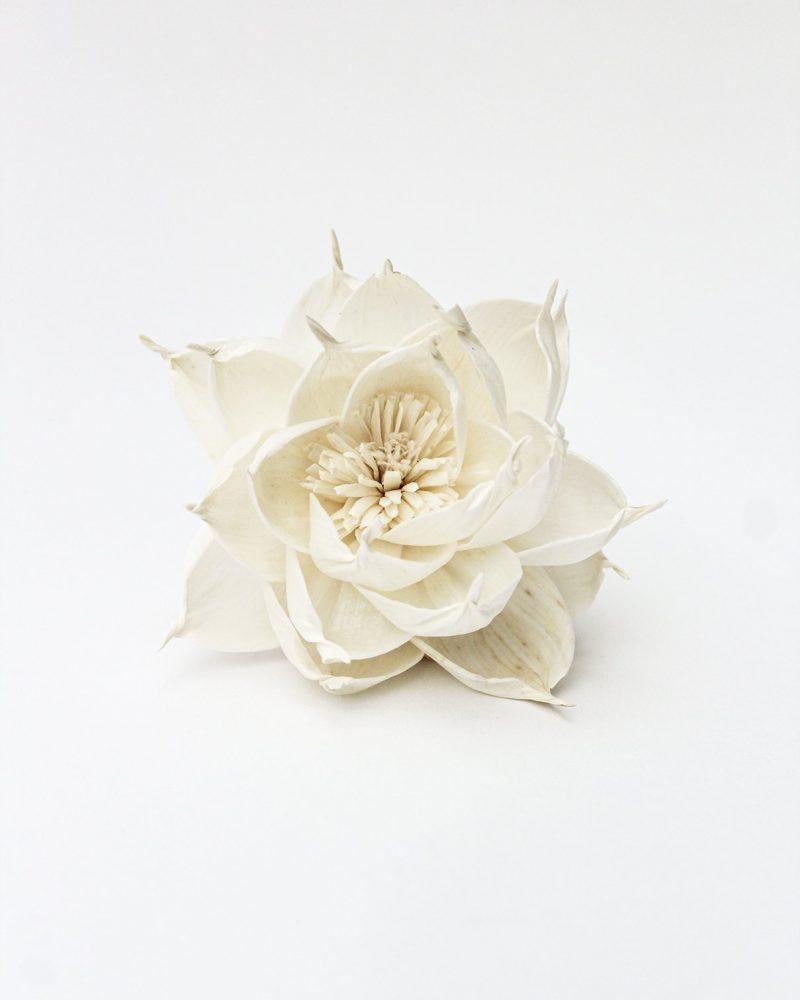 Fragrance Diffuser Flower